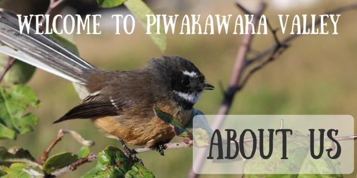 Welcome to Piwakawaka Valley