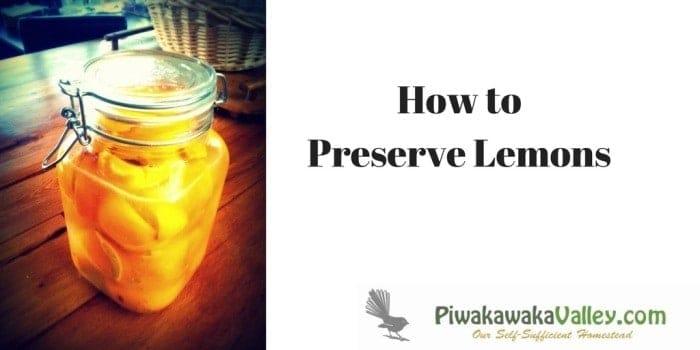 Preserving Lemons: Easy and Fast Salted Preserved Lemon Recipe promo image