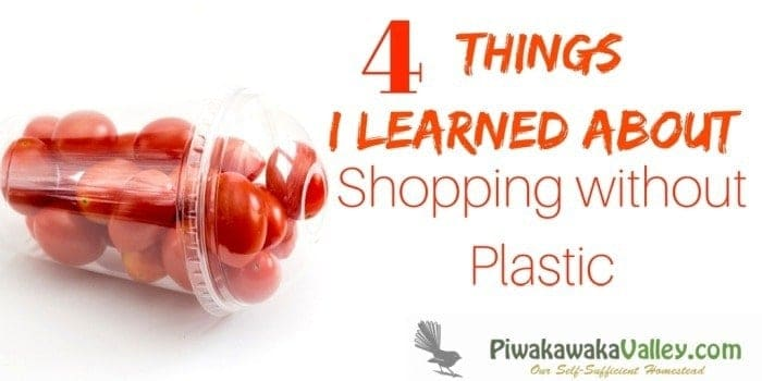 4 Things I learned on my first day Shopping Plastic Free