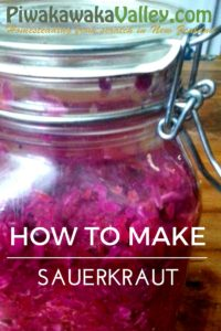 Sauerkraut - HOW TO MAKE PROBIOTICS AT HOME, ONE SERVING IS LIKE A WHOLE BOTTLE OF PRO-BIOTIC CAPSULES!