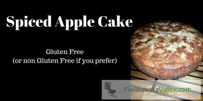 Spiced Apple Cake – Gluten free (or not!)