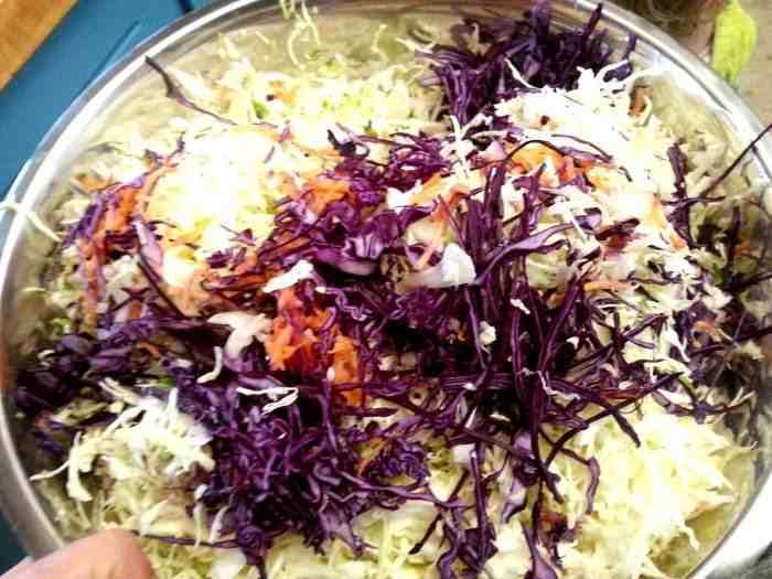 how to make sauerkraut from cabbage