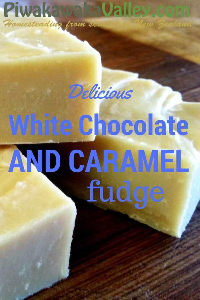 Delicious No Fail Fudge - White Chocolate and Caramel Fudge Recipe promo image