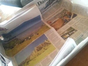homesteading in NZ