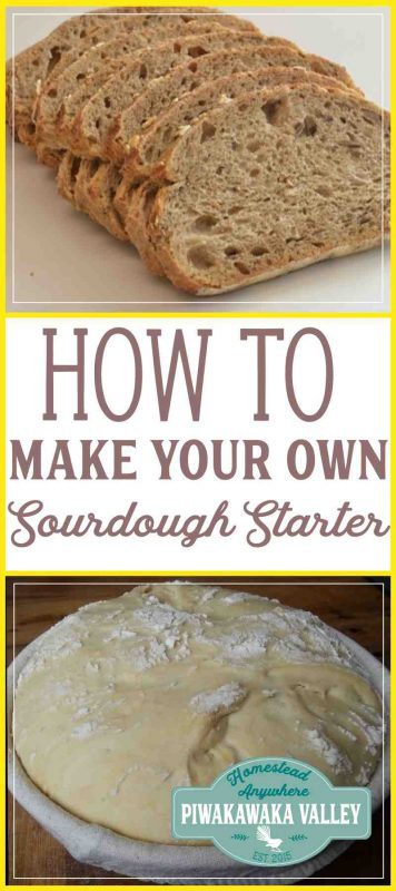 make a sourdough starter from scratch