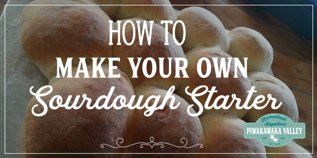 How to make your own Sourdough Starter From Scratch