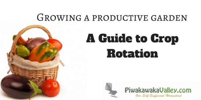 A Guide to Crop Rotation – Growing a productive garden