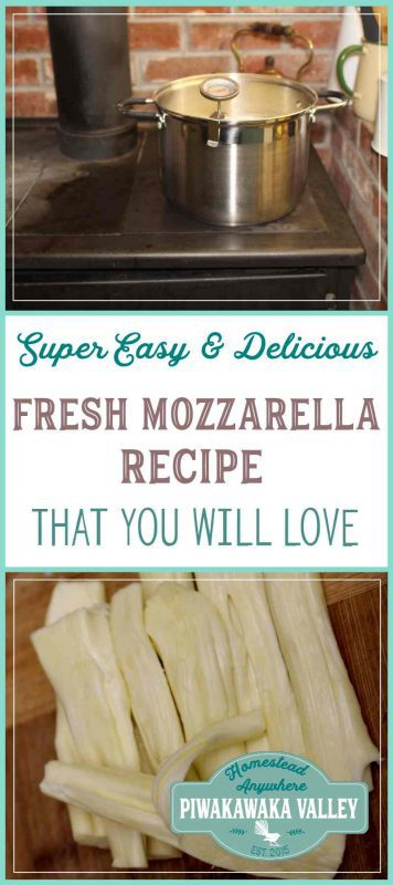 Have you every tried making cheese at home? Here is a delicious and super easy fresh mozzarella cheese recipe with step by step pictures and instructions. Try it today or pin it for later!