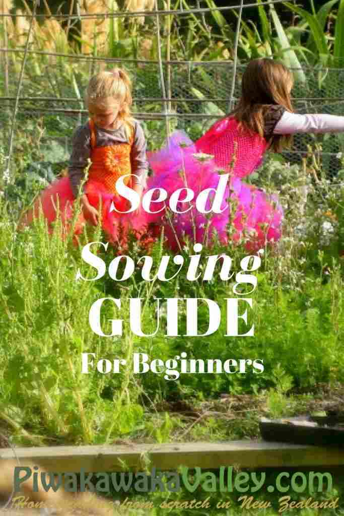 Homesteading in NZ seed-sowing guide for beginners, seed sowing timetable, US Zone 9, US Zone 8, seed sowing guide,