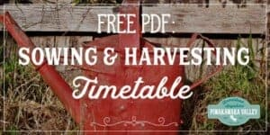 Zone 9 seed sowing and harvesting guide, what to plant and when in your garden.
