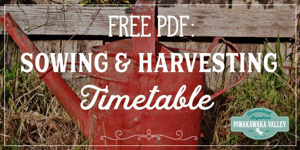 Grab your free PDF seed sowing and harvesting guide, what to plant and when in your garden.