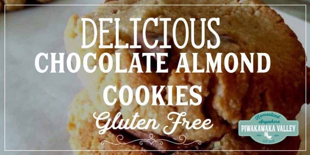 You should really try these delicious, quick and easy gluten free almond and chocolate chip cookies