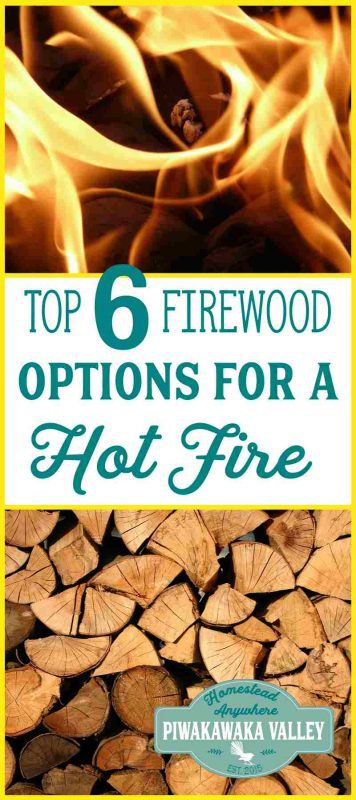 The best firewood options for cooking in a woodstove if you are based in Australia or New Zealand