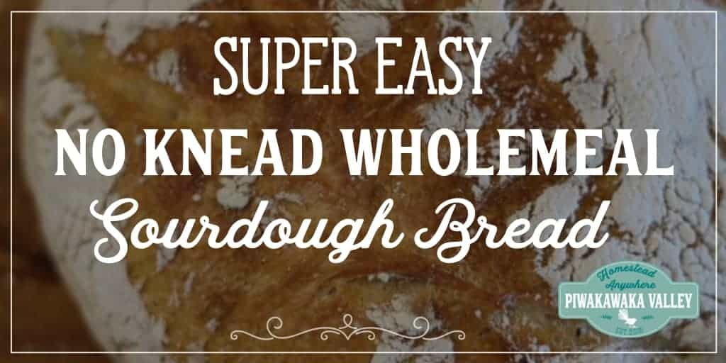 Are you too busy to make real bread? I bet you have time to make this! A super easy, no knead, wholemeal sourdough bread recipe made with you in mind. This delicious, chewy bread is simple and takes no fancy ingredients. Try it today or pin it for later. #bread #sourdough #homesteading #recipe
