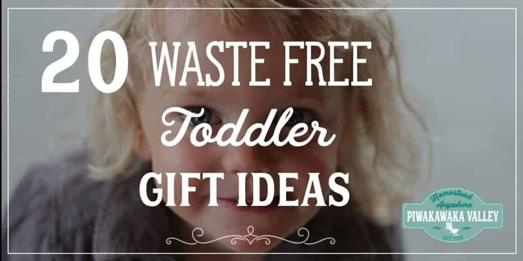 Top 20 Waste Free Gifts for Toddlers