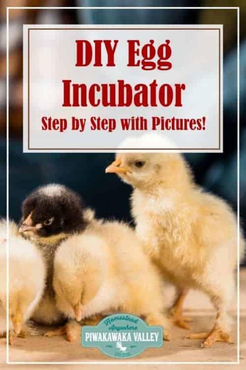 Make DIY Incubator