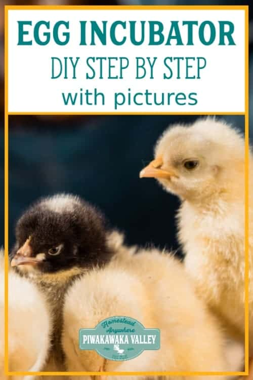 How to make a chicken incubator. DIY egg incubator - full instructions and photos. Step by step guide to making an incubator for chickens. #piwakawakavalley