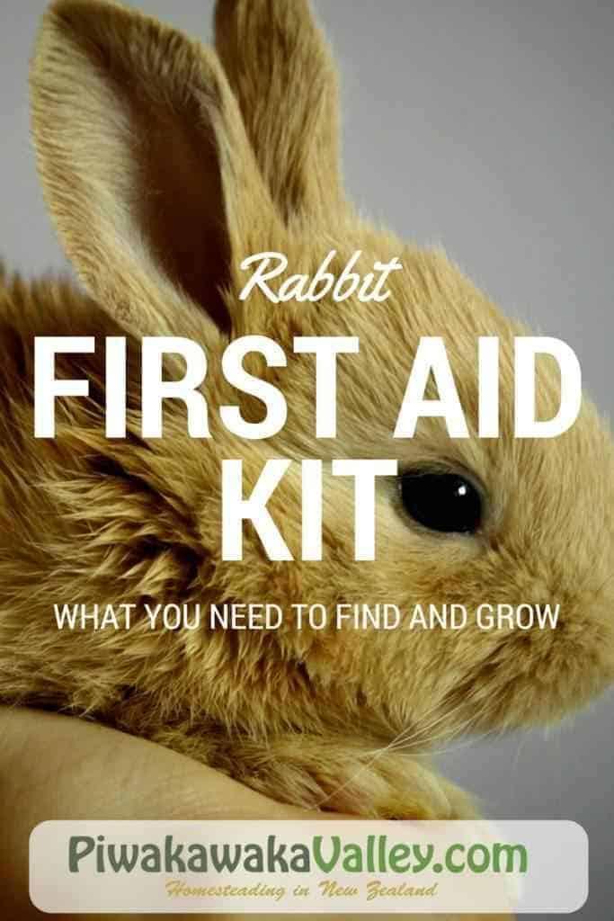 Rabbit First Aid Kit for Raising Meat Rabbits herbal remedies, rabbit health