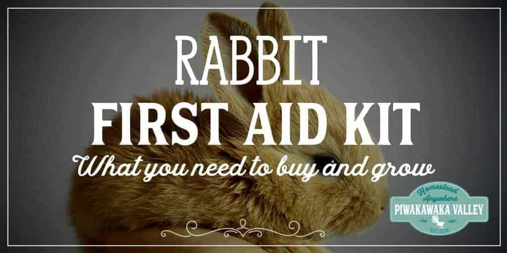 Rabbit First Aid Kit for Raising Meat Rabbits herbal remedies, rabbit health