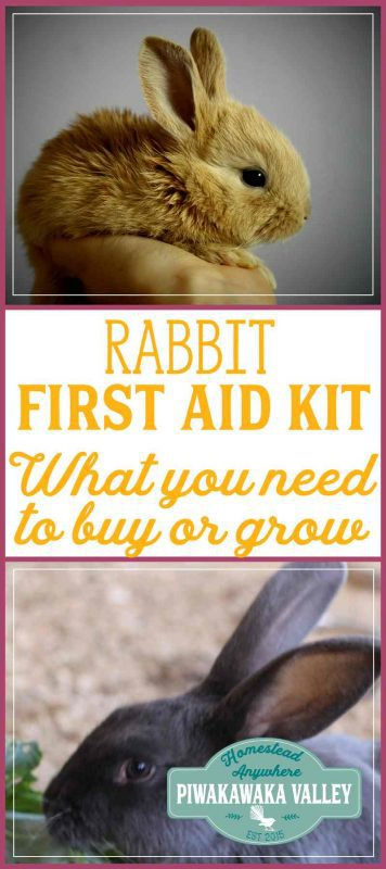 Rabbit First Aid Kit - Everything you will need in an Emergency for your bunny promo image