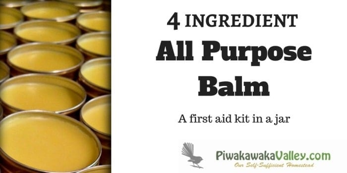 All Purpose Balm – Only 4 Ingredients.  A first aid kit in a jar!