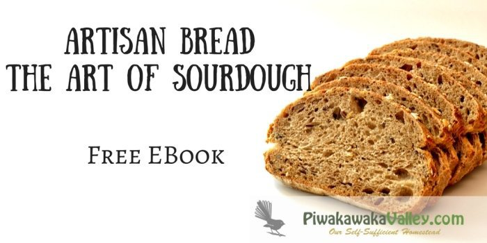 Sourdough is healthy, cheap and super simple to make. This free ebook shows you step by step how to make your own sourdough starter, loaves and several other recipes. FREE