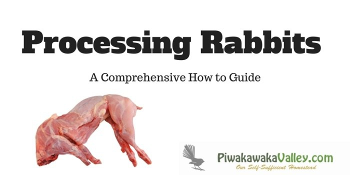 how to process and butcher rabbits like a professional.