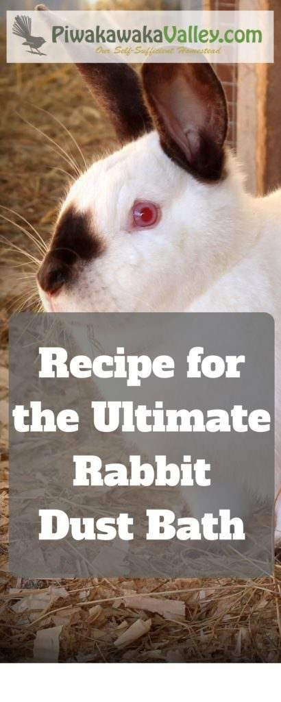 Did you know rabbits like a dust bath? They use it to naturally repel fleas, mites, ticks and lice. This is our own recipe for the Ultimate Rabbit Dust Bath
