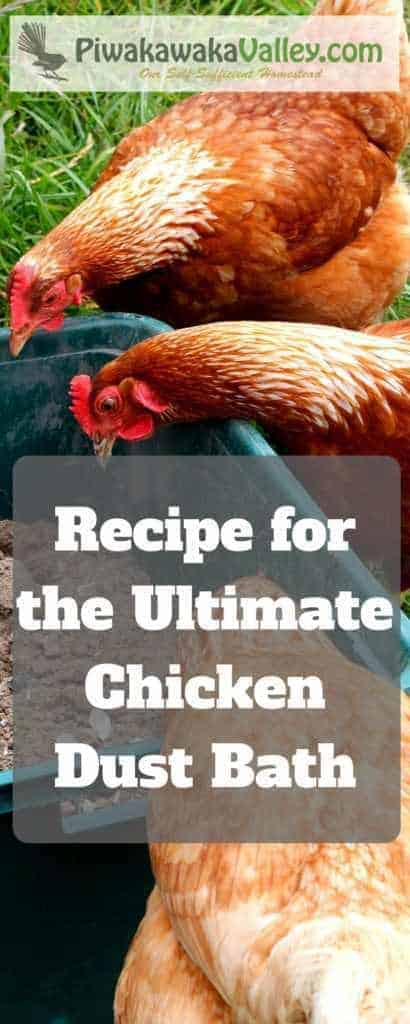 Did you know chickens love a dust bath? They use it to naturally repel fleas, mites, ticks and lice. This is our own recipe for the Ultimate Chicken Dust Bath