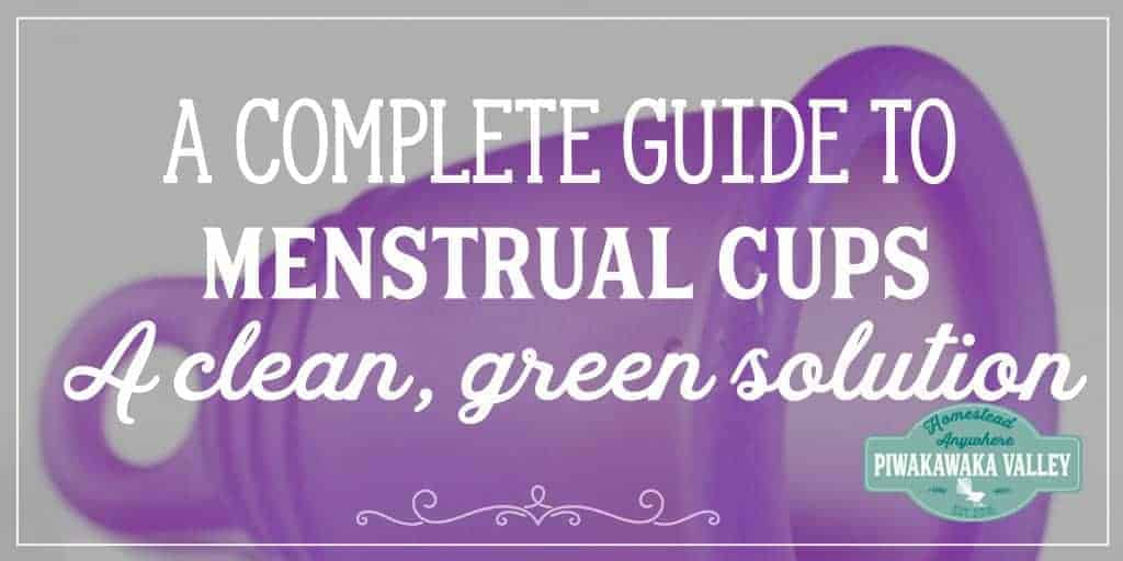 *For the ladies* A Guide to Menstrual Cups – The clean, green eco choices for your period.