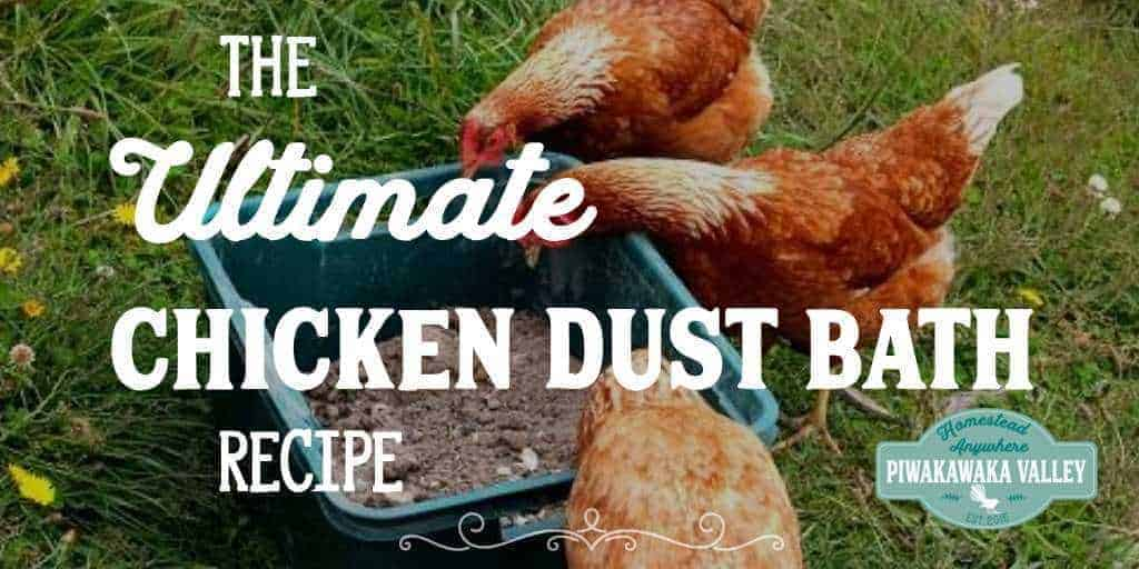 The Ultimate Chicken Dust Bath Recipe