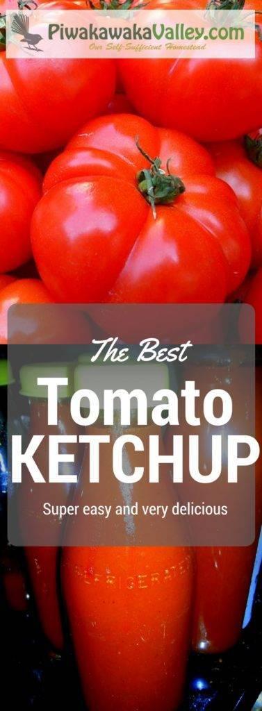 Tomato Ketchup Recipe | Best Tomato Sauce Recipe promo image