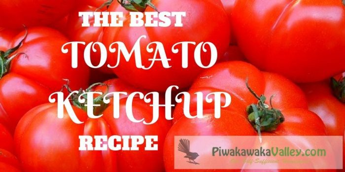 Best tomato ketchup recipe - better than bought and super easy - you must give it a try!