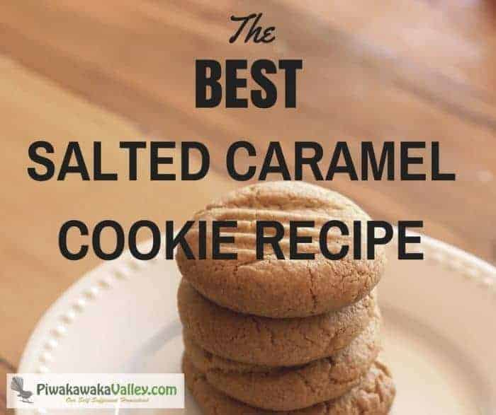 These salted caramel cookies are super easy and really delicious. They whip up quickly all in one pot, and are a hit with the children. Pin this to save for later, you will be glad you did!