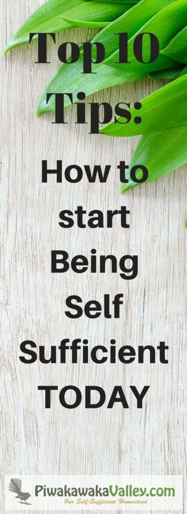 How to started homesteading where you are today. Learning to be self sufficient can start right now. You can be a homesteader at heart while living in the city!