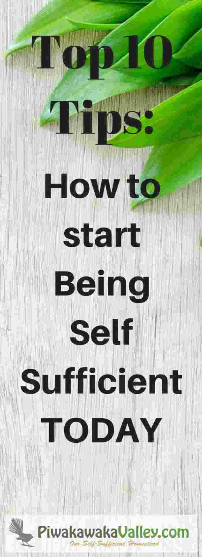 Being self sufficient top 10 tips on how to start today for How to start homesteading today