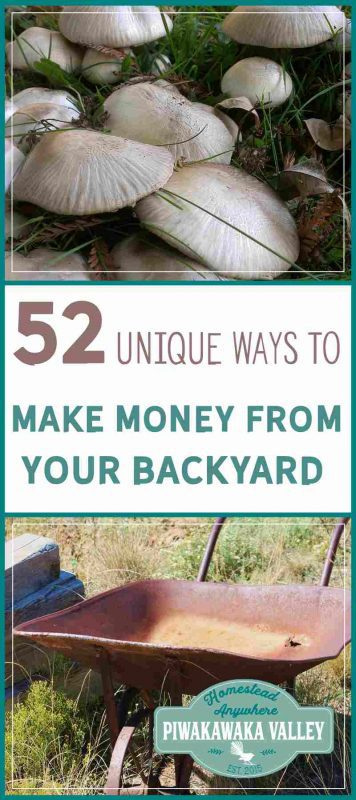 Making money from homesteading in your own backyard is the ultimate dream. Here are 52 ways to make money from your homestead or even small backyard.