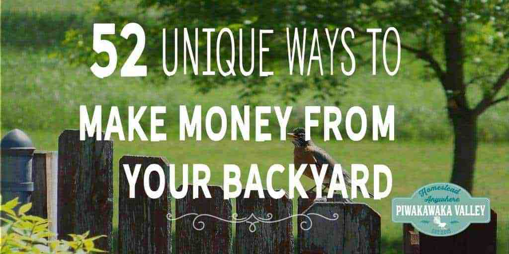 52 Unique Ways To Make Money Homesteading | Making A Profit From Your Backyard