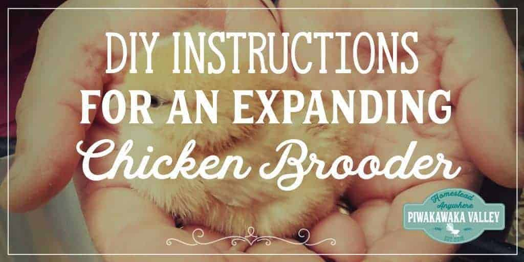 DIY Expandable Chicken Brooder