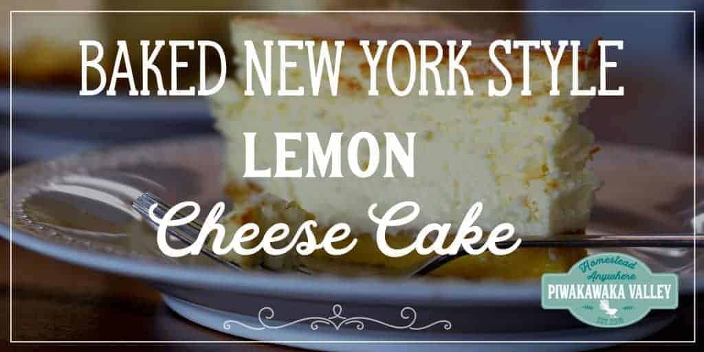Show Stopping Gluten Free Lemon New York Style Baked Cheesecake with Sponge Base