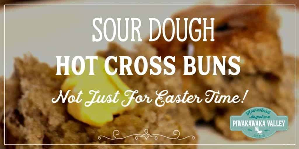 Sourdough Hot Cross Buns | No refined Sugar