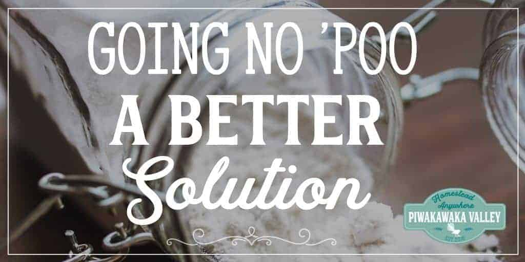 No 'Poo – Cheaper, More Satisfying and Much More Effective than Baking Soda