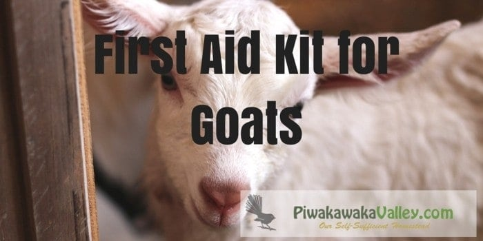 Do you have a first aid kit for your goats? They are easyto set up and every home with goats should have one. Find out how easy they are to put together today.