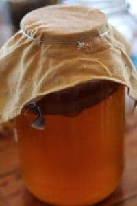 the lazy persons guide to making kombucha. Making kombucha in 10 easy steps