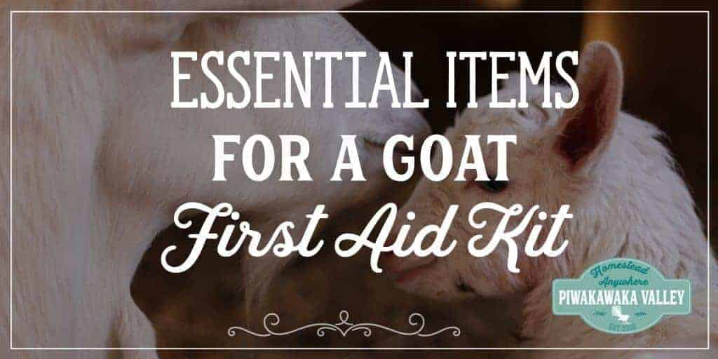 Do you have a first aid kit for your goats? They are easyto set up and every home with goats should have one. Find out how easy they are to put together today. #goats #farmingessentials #homesteading #animacare