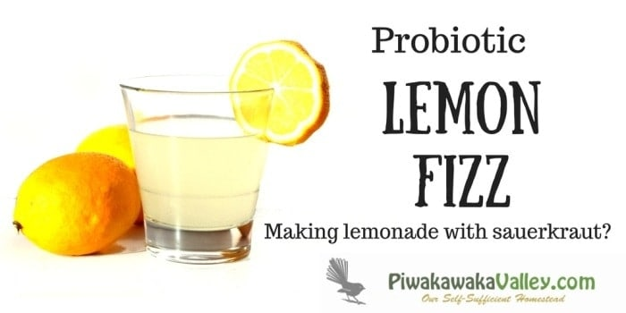 Probiotic Lemon Fizz | How to make fizzy Lemonade at home