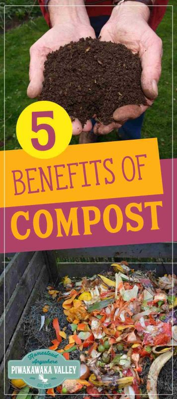 The benefits to having your own compost in your garden is huge. Here at 5 of the best reasons why you should be making your own compost.