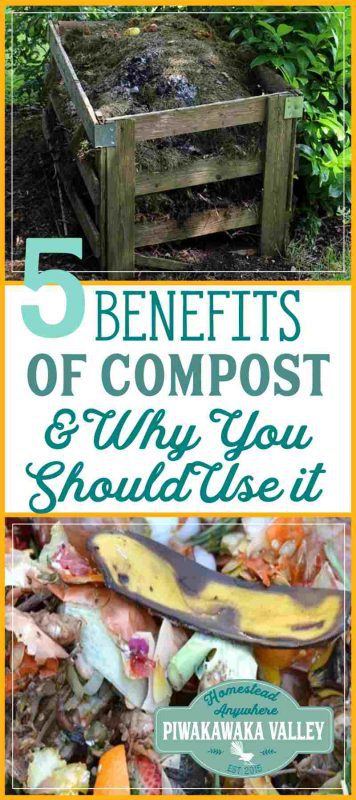 I love using compost on my garden! The benefits to having your own compost in your garden is huge. Here at 5 of the best reasons why you should be making your own compost.