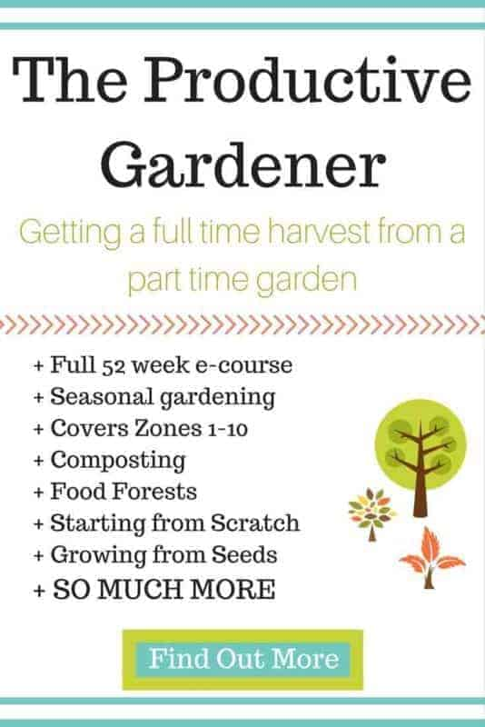 Do you dream of being self sufficient? Does the fear of tainted and industrially produced food worry you? Or are you concerned about what you and your family would eat if there was a massive disaster? The Productive Gardener is the answer!