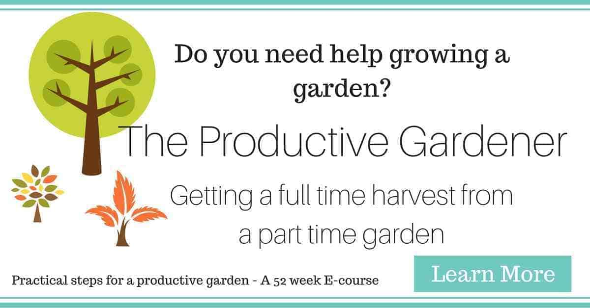 TheProductiveGardener
